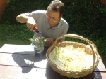 Peter making White Chestnut mother tincture